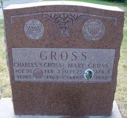 Charles S Gross
