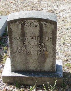 Magnolia Nolia <i>Anderson</i> Sloan