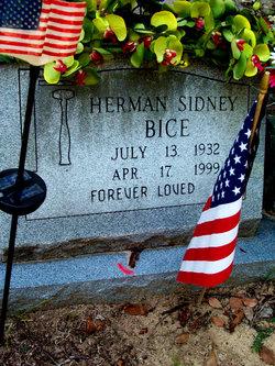 Sgt Herman Sidney Bice, Sr