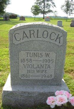 Violanta <i>Barnes</i> Carlock