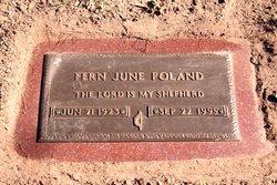 Fern June Poland