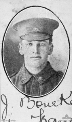 Pvt Harold John Bourke