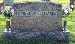 Mary <i>Lewellyn</i> Adams