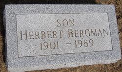 Herbert Bergman