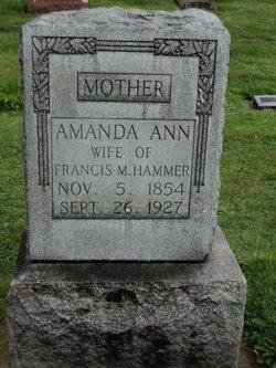 Amanda Ann <i>Thomson</i> Hammer