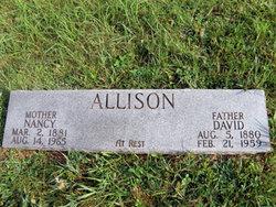 David M. Allison