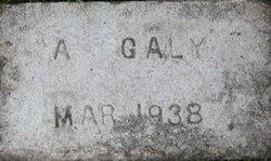 Galy Albert Gally