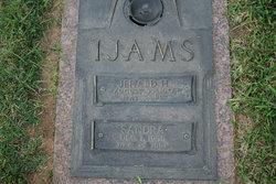 Jerald H Ijams