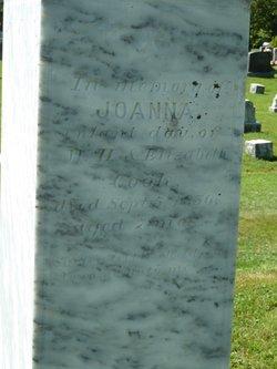 Joanna Cook