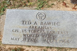 Ted A. Bawiec