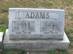 Aaron W. Adams