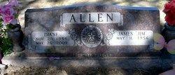 Patricia Diane <i>Baker</i> Allen