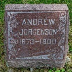 Andrew Jorgenson