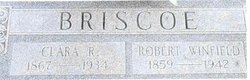 Robert Winfield Briscoe