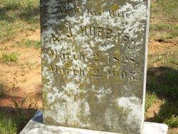 Ann Jane <i>Mills</i> Hubbard