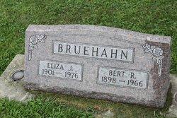 Eliza Jane <i>Gilbert</i> Bruehahn