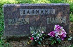 Eliza Emeline <i>Hamilton</i> Barnard