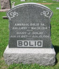 Ambrose Bolio, Sr