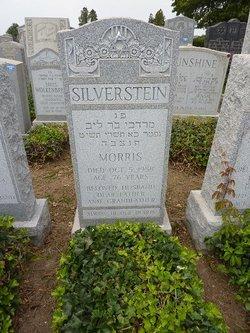 Morris Silverstein
