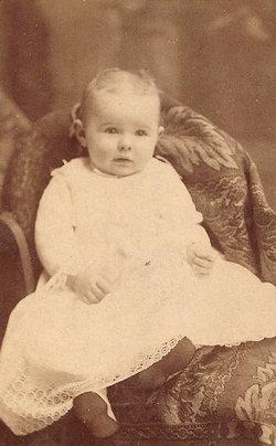 Louisa <i>Todd</i> Hopkins