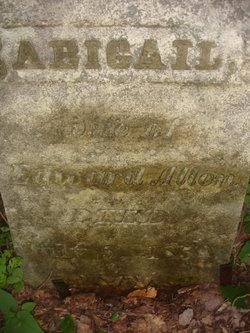 Abigail <i>Palmer</i> Allen