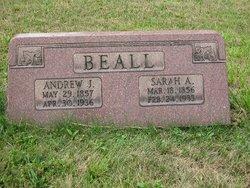 Sarah Ann <i>Stewart</i> Beall