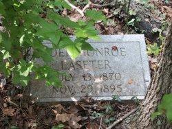Joel Monroe Laseter
