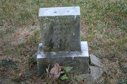 Anna Virginia Ambrose