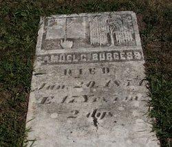 Samuel C Burgess