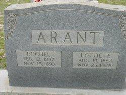 Charlotte Lottie <i>Evans</i> Arant