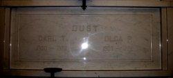 Carl Theodore Dust