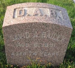 David A. Bailey