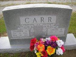 Louise <i>Rivenbark</i> Carr