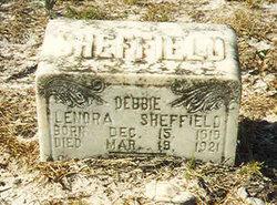 Debbie Lenora Sheffield