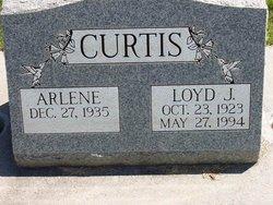 Loyd Curtis