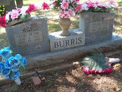 Arlie Ann Burris