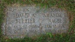 David A. Buehler