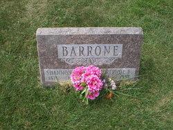 Shannon Wilson Barrone