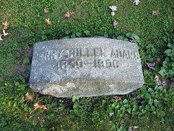 Henry Cullen Adams