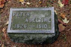 Peter Aseltine
