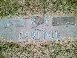Joseph P. Carlton