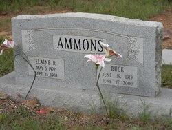 Elaine R Ammons