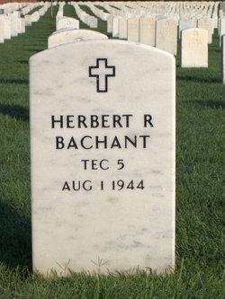 Corp Herbert Raymond Bachant