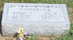 Ollie M Barnbrook