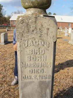 Jacob Bird, Jr