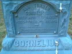 Ann Cornelius