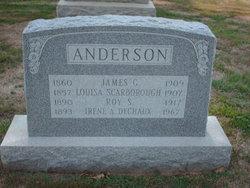 Louisa <i>Scarborough</i> Anderson