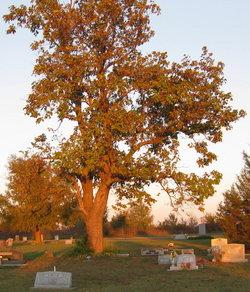 Sageeyah Cemetery