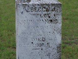 Rebecca Jane <i>West</i> Haning