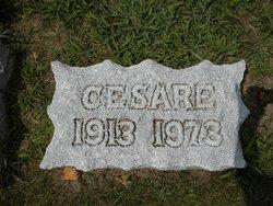 Cesare Colombo